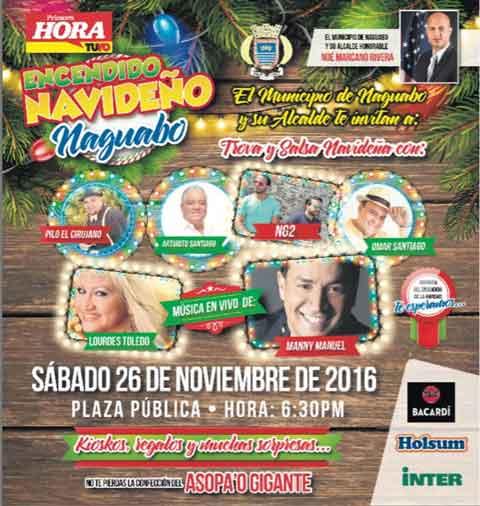 Primer Festival Navideño en Naguabo 2016