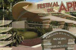 Festival del Apio en Barranquitas 2017