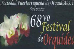 68vo Festival de Orquídeas 2017