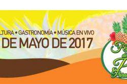 Festival de la Piña Paradisíaca 2017