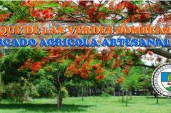 Mercado Agrícola y Artesanal UPR Cayey