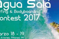 Surfing and Bodyboarding Contest 2017