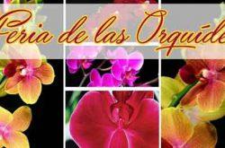 9na Feria de las Orquídeas en Dorado 2017