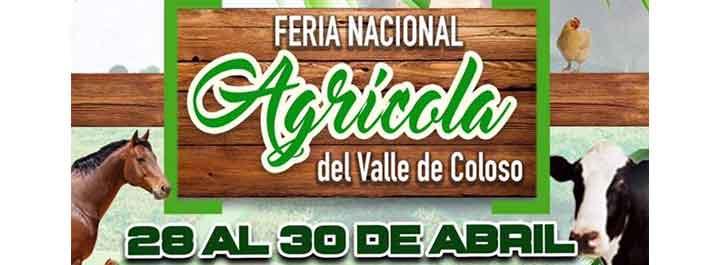 Feria Nacional Agrícola Valle de Coloso Aguada 2017
