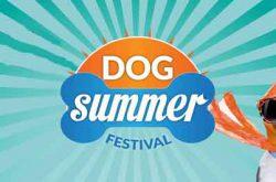 Dog Summer Festival 2017