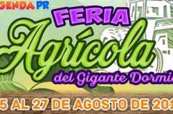Feria Agrícola del Gigante Dormido 2017
