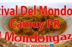 Festival Del Mondongo En Camuy 2017