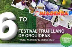 Sexto Festival de Orquídeas 2017 en Trujillo Alto