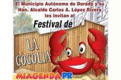 Festival de la Cocolía 2017 en Dorado