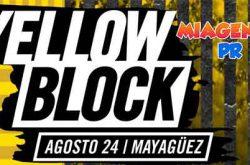 Medalla Light Yellow Block 2017