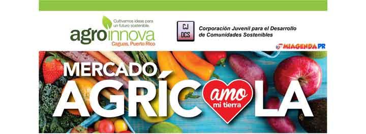 Mercado Agrícola y Artesanal en Caguas