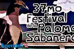 Festival de la Paloma Sabanera en Cidra 2017