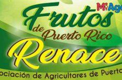 Feria Agrícola Frutos de Puerto Rico Renace 2018