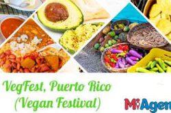 Puerto Rico VegFest 2018