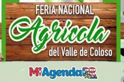 Feria Nacional Agrícola Valle de Coloso Aguada 2018
