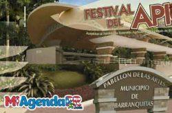 Festival del Apio en Barranquitas 2018