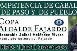 COPA Alcalde De Fajardo 2018