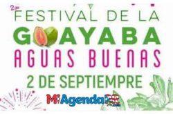Festival de la Guayaba 2018 en Aguas Buenas