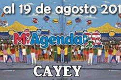 Fiestas Patronales de Cayey 2018