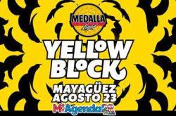 Medalla Light Yellow Block 2018