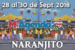 Fiestas Patronales de Naranjito 2018