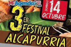 3er Festival de la Alcapurria en Humacao 2018