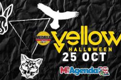 Medalla Light Yellow Halloween 2018