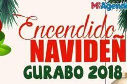 Encendido Navideño en Gurabo 2018