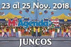Majestuosas Fiestas de Pueblo en Juncos 2018