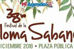Festival de la Paloma Sabanera en Cidra 2018