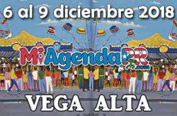 Fiestas Patronales de Vega Alta 2018