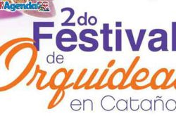 2do Festival de Orquídeas en Cataño 2019