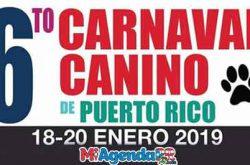 6to Carnaval Canino en Guayanilla 2019