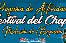 Festival del Chapín en Naguabo 2019