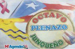 Octavo Plenazo Junqueño 2019