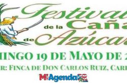 Festival de la Caña de Azúcar en Hatillo 2019
