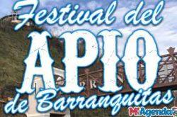 Festival del Apio en Barranquitas 2019