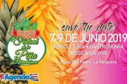 Festival de la Piña Paradisíaca 2019