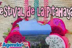 Festival de la Pitahaya en Arroyo 2019
