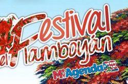 Festival del Flamboyán de Peñuelas 2019