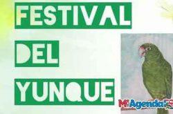 5to Festival del Yunque 2019