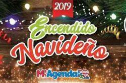 Encendido Navideño en Naguabo 2019