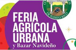 Feria Agrícola Urbana y Bazar Navideño 2019