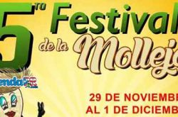 Festival de la Molleja en Humacao 2019