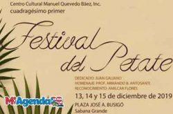 Festival del Petate en Sabana Grande 2019