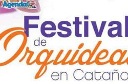 3er Festival De Orquídeas En Cataño 2020