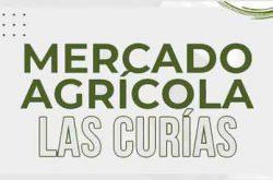Mercado Agrícola Las Curías