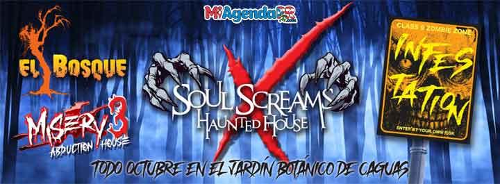 Soul Screams Haunted House 2021